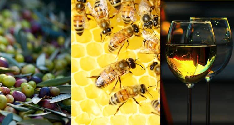 Tenute Rossini: miele, vino e olio
